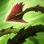Rễ Cây Trói Buộc