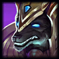 Taro Bearr Top Nasus