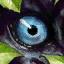Predatore elusivo